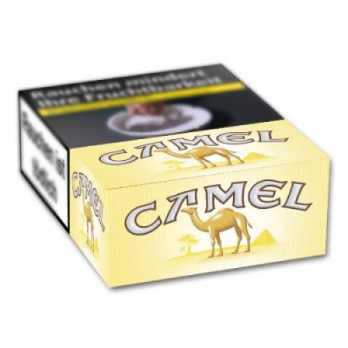 Einzelpackung  Camel Filter XXL (1x26)