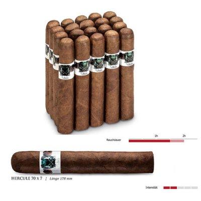 Asylum Schizo Zigarren Hercule 70x7 1 Stück