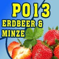 P013 - 325ml Shisha Molasse - Erdbeere und Minze