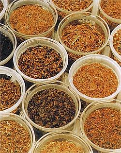Schnitt für Schnitt ein eigener Tabak-Charakter